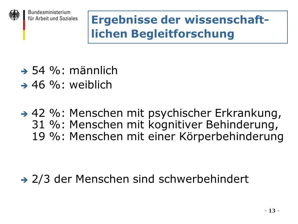 Ergebnisse der wissenschaft- lichen Begleitforschung è 54 %: männlich è 46 %: weiblich è 42 %: Menschen mit psychischer Erkrankung, 31 %: Menschen mit
