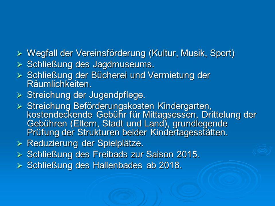 Wegfall der Vereinsförderung (Kultur, Musik, Sport) Wegfall der Vereinsförderung (Kultur, Musik, Sport) Schließung des Jagdmuseums. Schließung des Jag