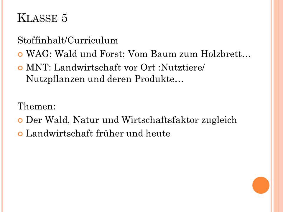 K LASSE 6: Stoffinhalt/Curriculum Deutsch: Berufe meiner Eltern WAG: Berufe in Lenzkirch und Umgebung