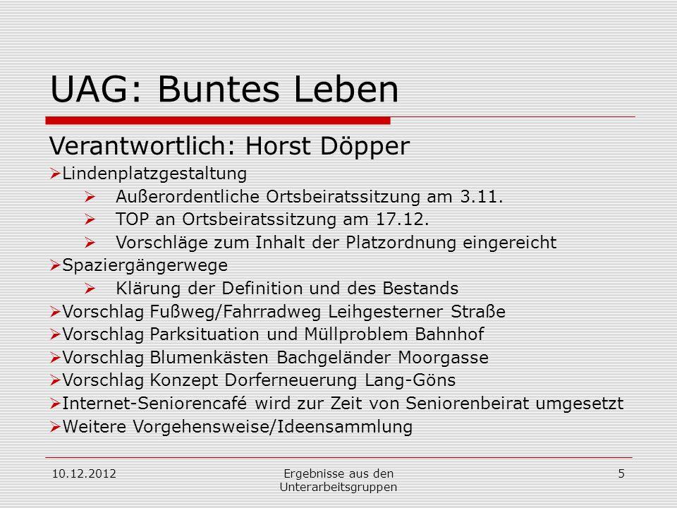 10.12.2012Ergebnisse aus den Unterarbeitsgruppen 5 UAG: Buntes Leben Verantwortlich: Horst Döpper Lindenplatzgestaltung Außerordentliche Ortsbeiratssitzung am 3.11.