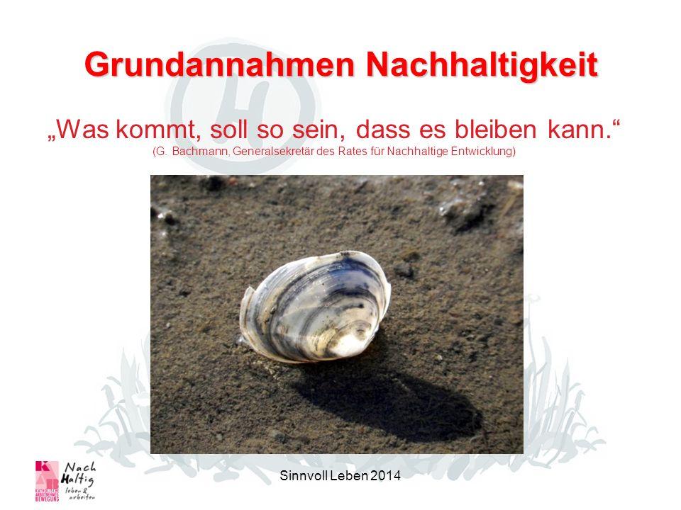 Grundannahmen Nachhaltigkeit Sinnvoll Leben 2014 Was kommt, soll so sein, dass es bleiben kann. (G. Bachmann, Generalsekretär des Rates für Nachhaltig