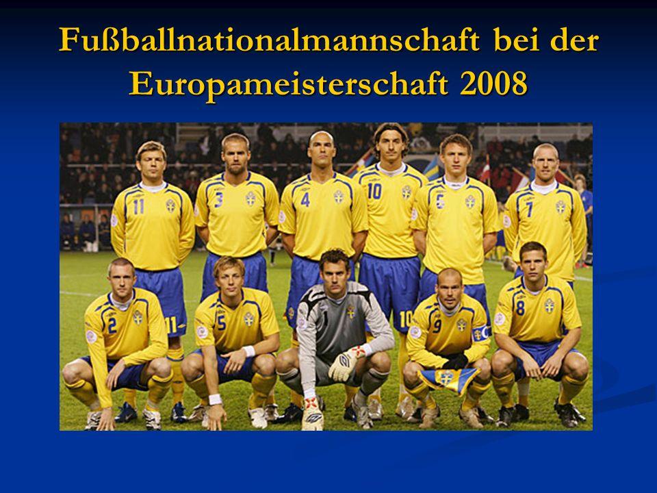Fußballnationalmannschaft bei der Europameisterschaft 2008