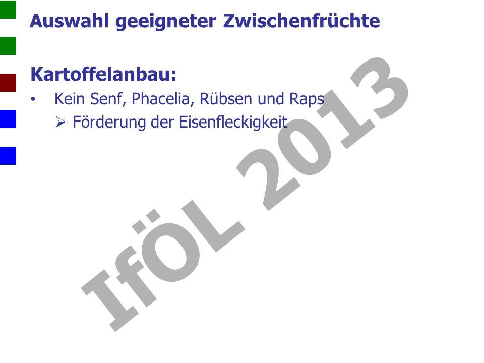 Kartoffelanbau: Kein Senf, Phacelia, Rübsen und Raps Förderung der Eisenfleckigkeit Auswahl geeigneter Zwischenfrüchte IfÖL 2013