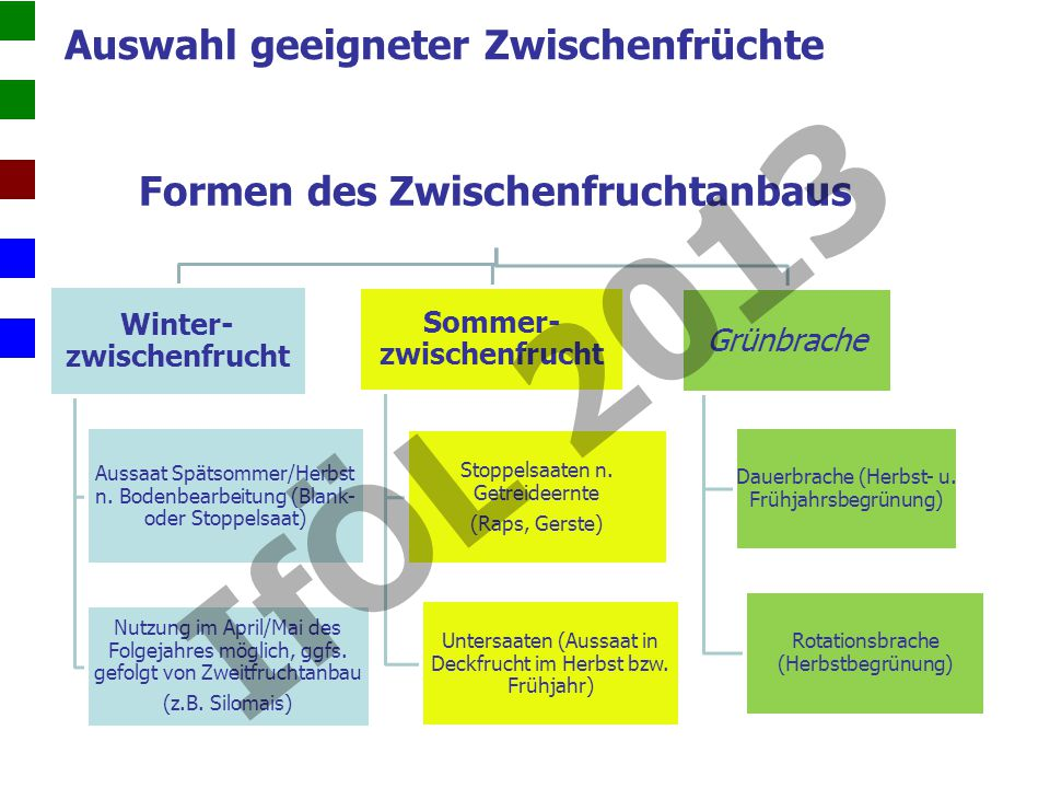 Formen des Zwischenfruchtanbaus Winter- zwischenfrucht Aussaat Spätsommer/Herbst n.