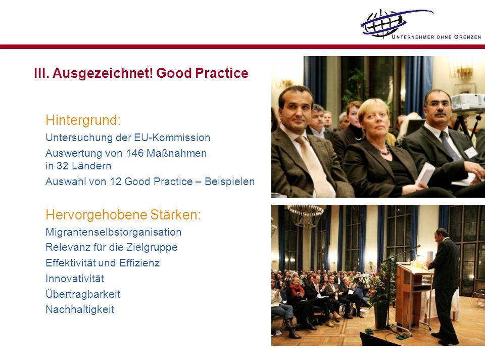 III. Ausgezeichnet! Good Practice Hintergrund: Untersuchung der EU-Kommission Auswertung von 146 Maßnahmen in 32 Ländern Auswahl von 12 Good Practice