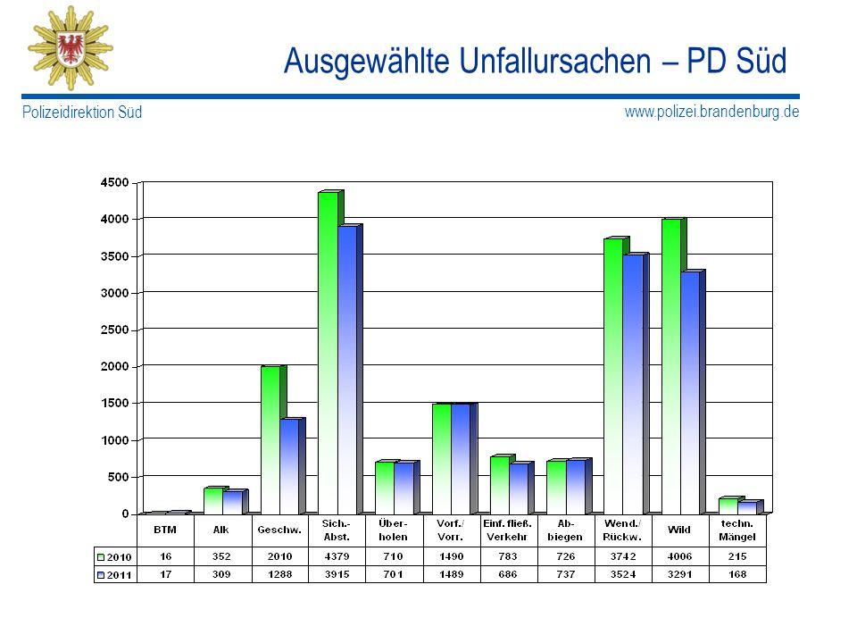 www.polizei.brandenburg.de Polizeidirektion Süd Ausgewählte Unfallursachen – PD Süd