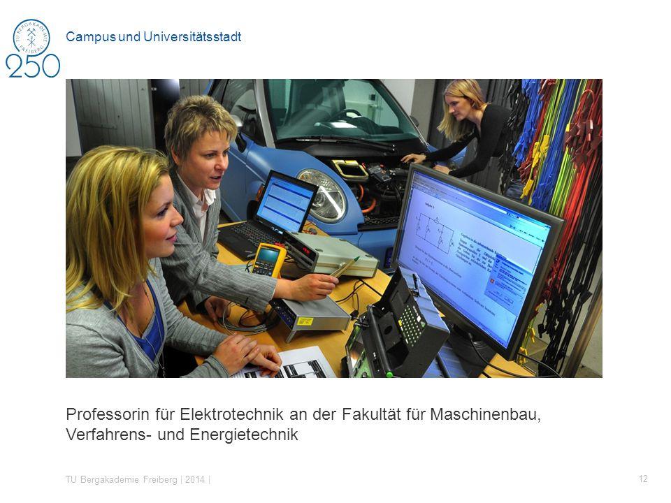 Professorin für Elektrotechnik an der Fakultät für Maschinenbau, Verfahrens- und Energietechnik TU Bergakademie Freiberg | 2014 | 12 Campus und Universitätsstadt