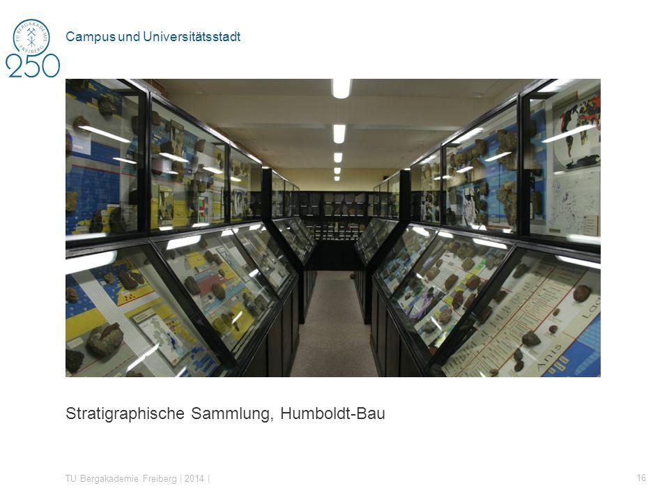 Stratigraphische Sammlung, Humboldt-Bau TU Bergakademie Freiberg | 2014 | 16 Campus und Universitätsstadt