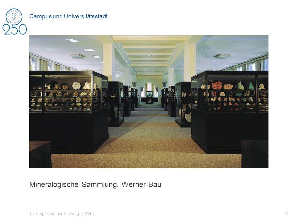 Mineralogische Sammlung, Werner-Bau TU Bergakademie Freiberg | 2014 | 17 Campus und Universitätsstadt