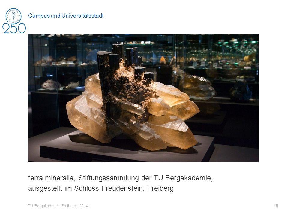 terra mineralia, Stiftungssammlung der TU Bergakademie, ausgestellt im Schloss Freudenstein, Freiberg TU Bergakademie Freiberg | 2014 | 18 Campus und Universitätsstadt