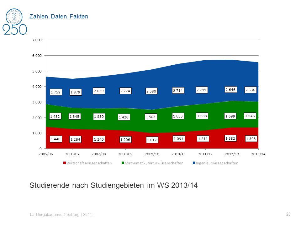 Studierende nach Studiengebieten im WS 2013/14 TU Bergakademie Freiberg | 2014 | 26 Zahlen, Daten, Fakten