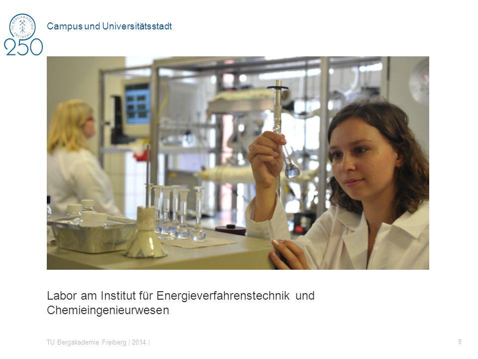Labor am Institut für Energieverfahrenstechnik und Chemieingenieurwesen TU Bergakademie Freiberg | 2014 | 9 Campus und Universitätsstadt