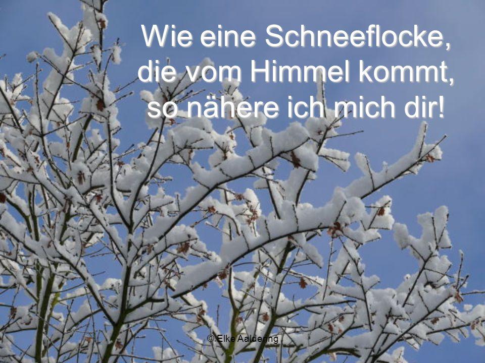 © Elke Aaldering Leise wie Schnee! Mein Kind, Leise und sanft wie der Schnee fällt, ist mein Reden zu dir!