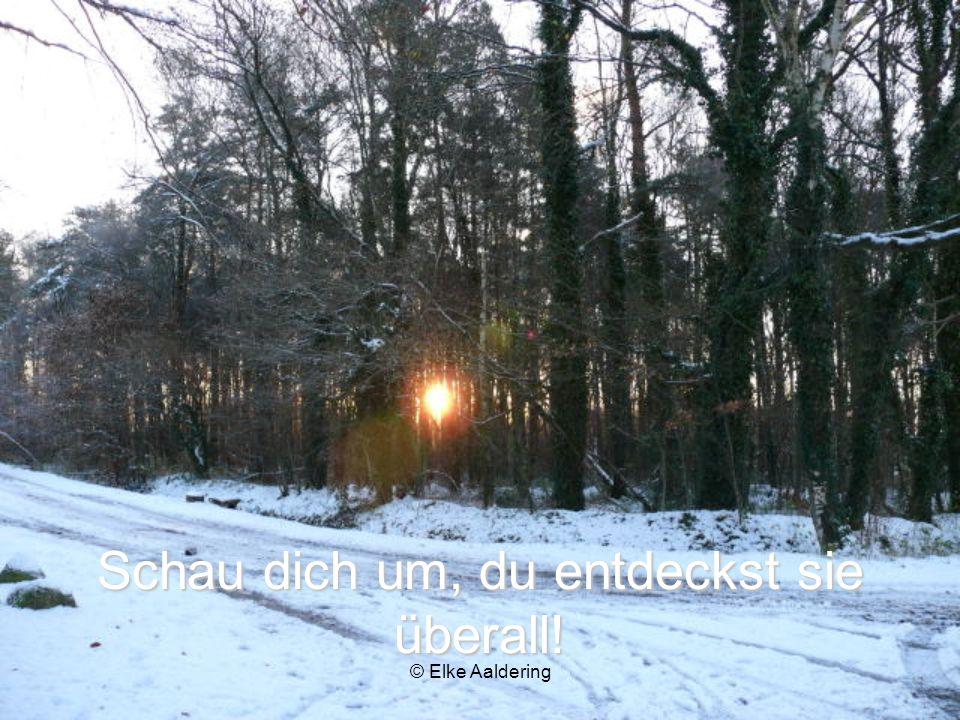 © Elke Aaldering So wie der Schnee auf alles seine sanfte, weiche Decke legt, berge ich dich in meiner Liebe!