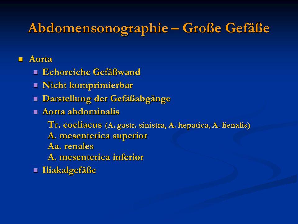 Abdomensonographie – Große Gefäße Aorta Aorta Echoreiche Gefäßwand Echoreiche Gefäßwand Nicht komprimierbar Nicht komprimierbar Darstellung der Gefäßa