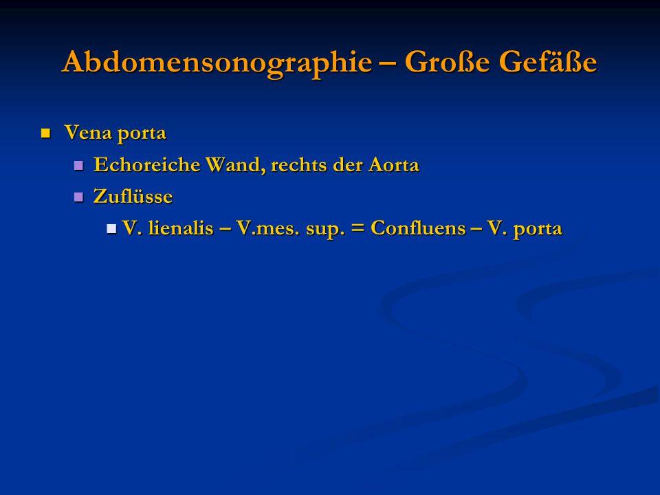Abdomensonographie – Große Gefäße Vena porta Vena porta Echoreiche Wand, rechts der Aorta Echoreiche Wand, rechts der Aorta Zuflüsse Zuflüsse V. liena