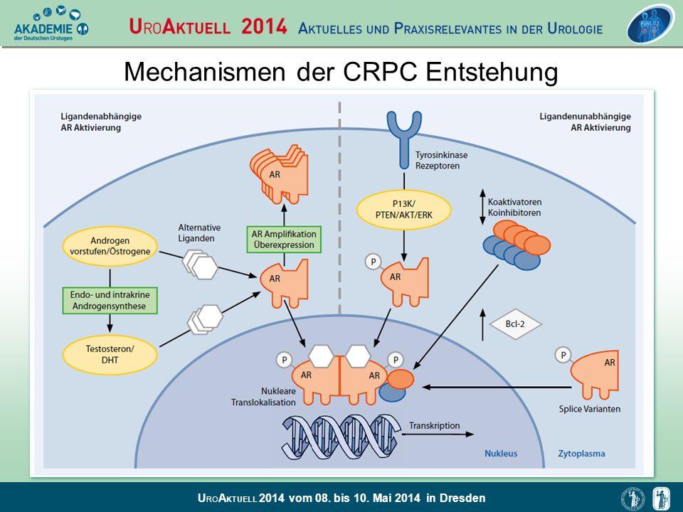 U RO A KTUELL 2014 vom 08. bis 10. Mai 2014 in Dresden Angriffspunkte der Systemtherapie beim CRPC