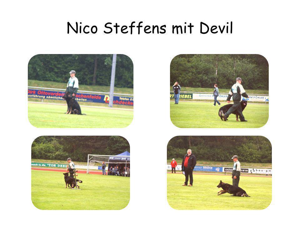oder ein bißchen Devil mit Nico?