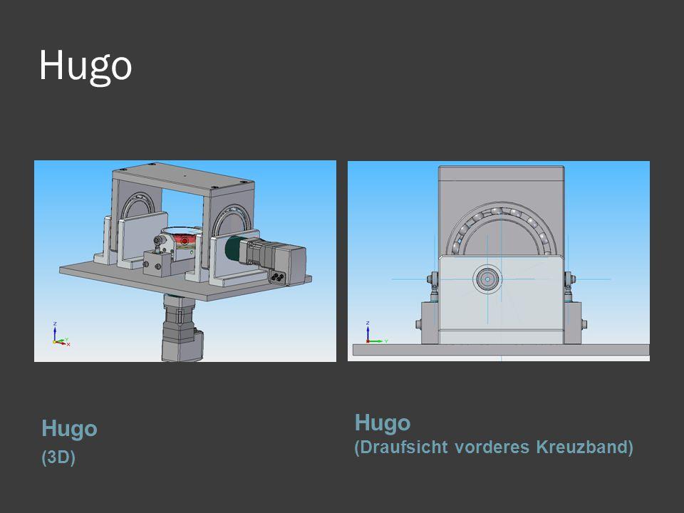 Hugo (3D) Hugo (Draufsicht vorderes Kreuzband)