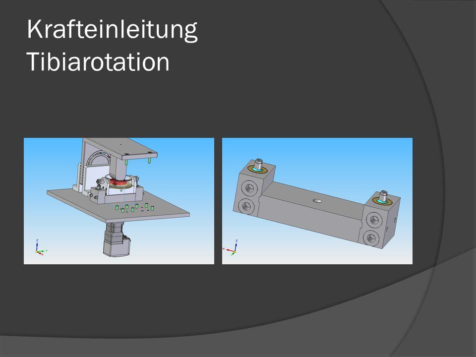 Krafteinleitung Tibiarotation