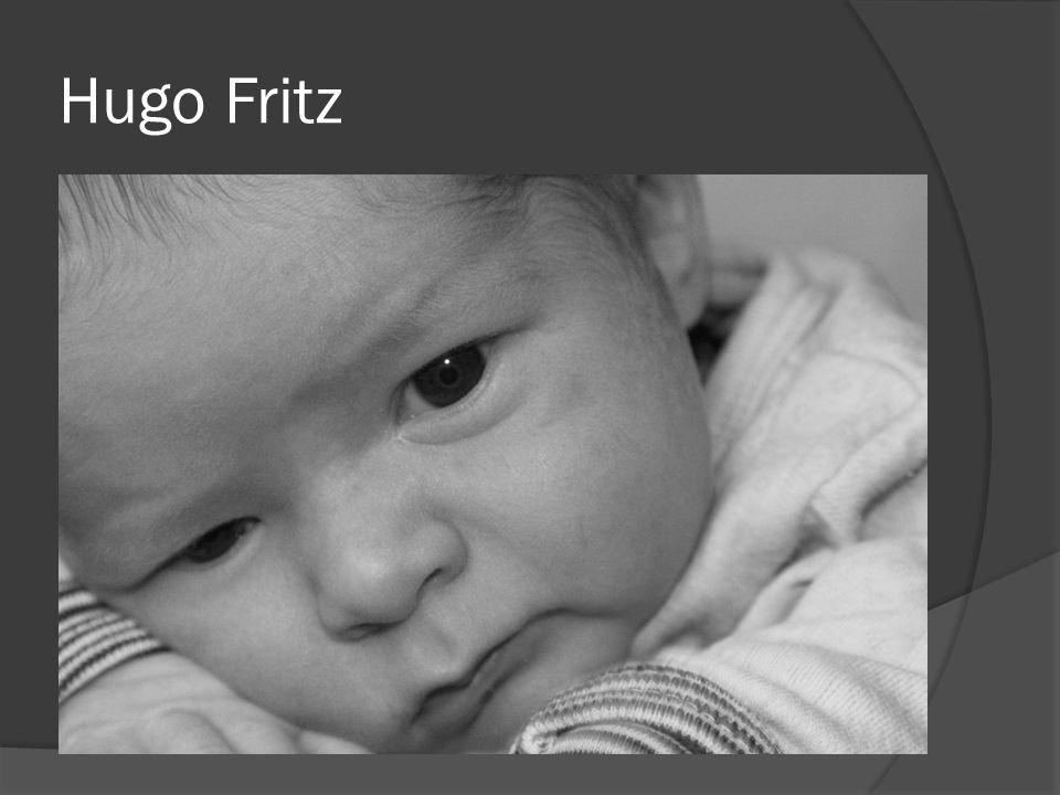 Hugo Fritz