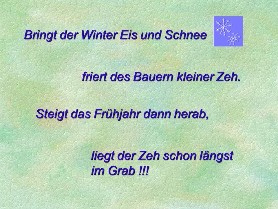 Bringt der Dezember Schnee und Eis, wärmt sich der Bauer seinen Steiss, allnächtlich an der jungen Magd, was dieser oftmals nicht behagt
