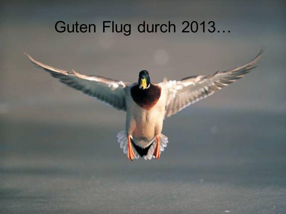 Guten Flug durch 2013…