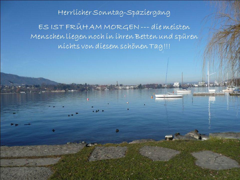 Jetzt im Februar sind noch keine Schiffe auf dem See aber im Sommer wird hier Hochbetrieb sein.