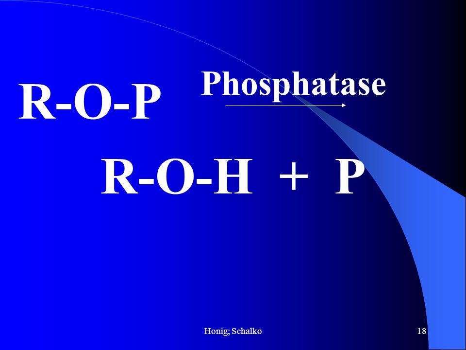 Honig; Schalko18 R-O-P R-O-H + P Phosphatase