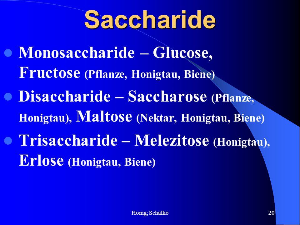 Honig; Schalko20Saccharide Monosaccharide – Glucose, Fructose (Pflanze, Honigtau, Biene) Disaccharide – Saccharose (Pflanze, Honigtau), Maltose (Nekta