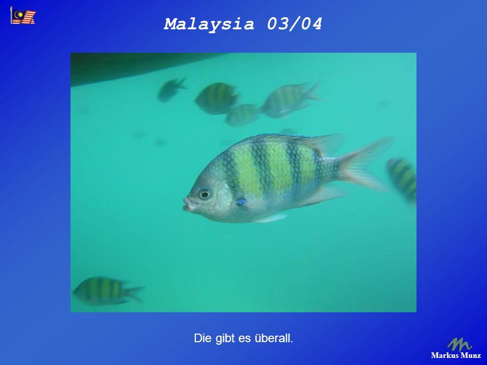 Malaysia 03/04 Markus Munz Die gibt es überall.