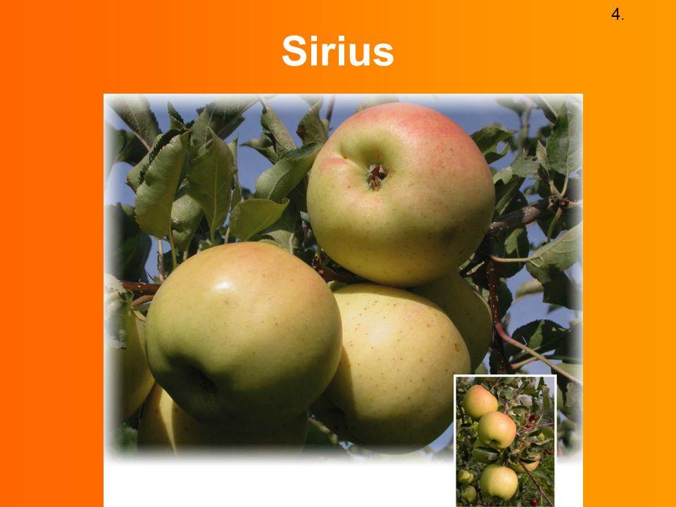4. Sirius