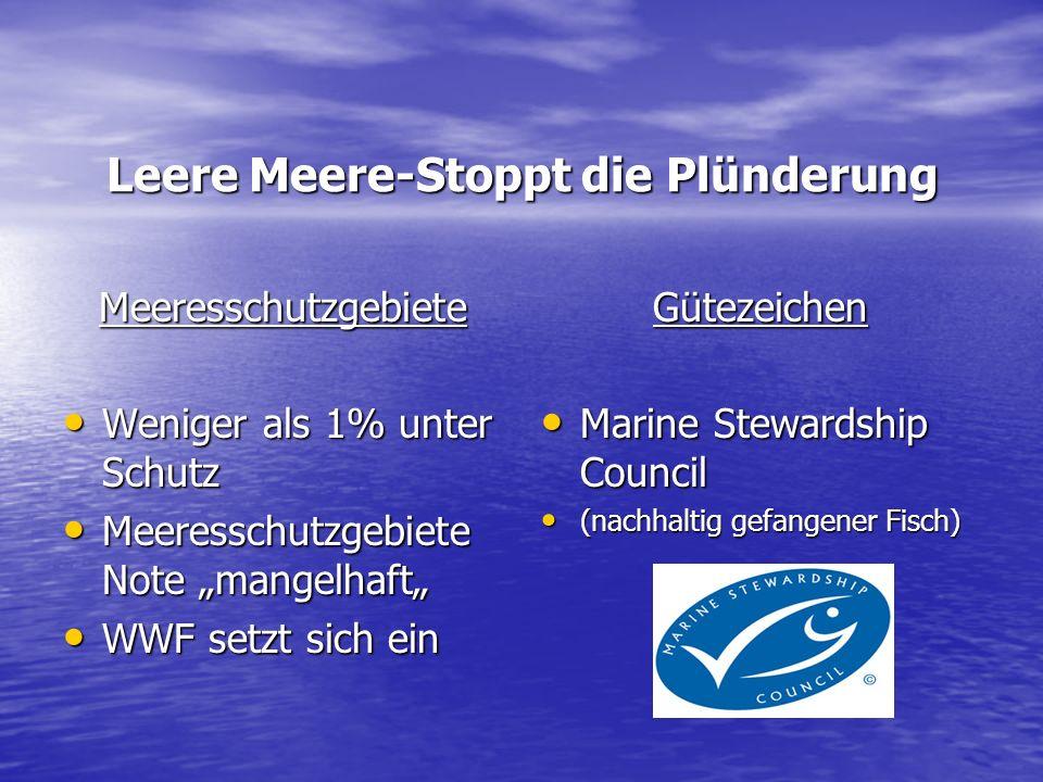 Leere Meere-Stoppt die Plünderung Meeresschutzgebiete Weniger als 1% unter Schutz Weniger als 1% unter Schutz Meeresschutzgebiete Note mangelhaft Meer