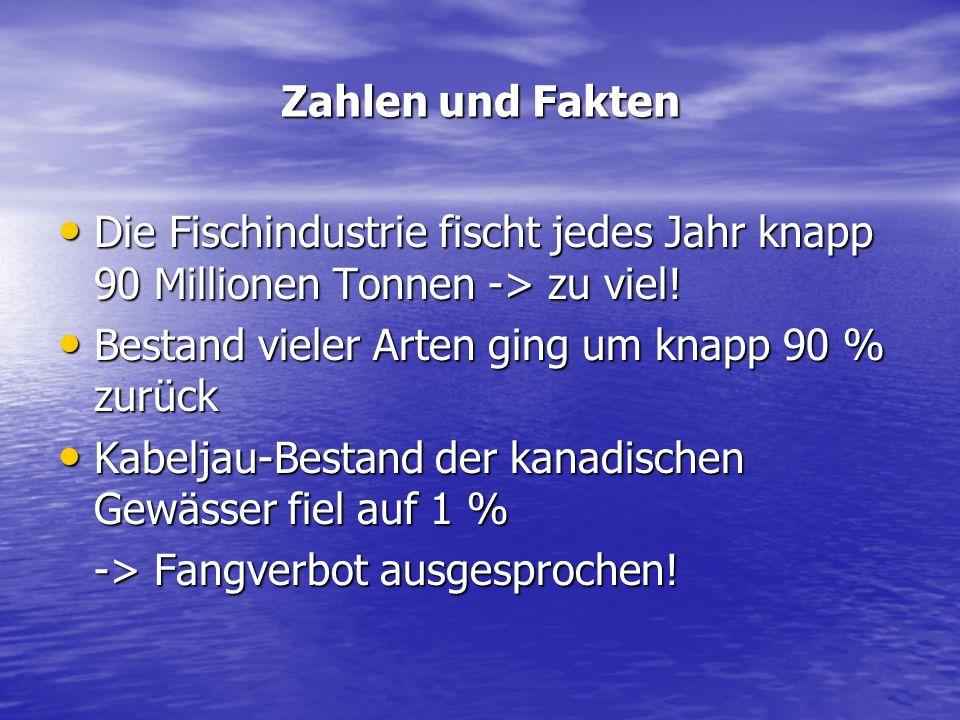 Zahlen und Fakten Die Fischindustrie fischt jedes Jahr knapp 90 Millionen Tonnen -> zu viel! Die Fischindustrie fischt jedes Jahr knapp 90 Millionen T