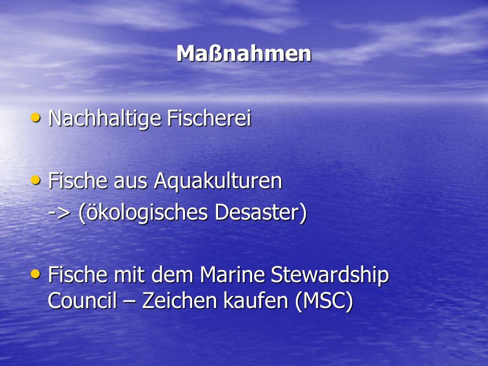 Maßnahmen Nachhaltige Fischerei Nachhaltige Fischerei Fische aus Aquakulturen Fische aus Aquakulturen -> (ökologisches Desaster) Fische mit dem Marine