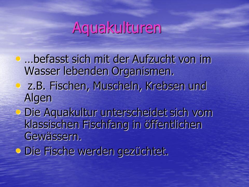 Aquakulturen Aquakulturen …befasst sich mit der Aufzucht von im Wasser lebenden Organismen. …befasst sich mit der Aufzucht von im Wasser lebenden Orga