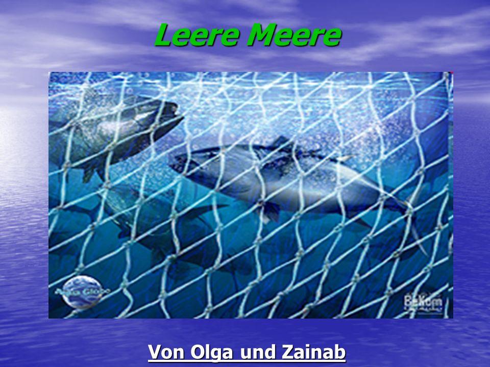 Überfischung Überfischung Tunfisch, Rotbarsch oder Nordseekabelja sind überfischt oder an biologischen Grenzen befischt.