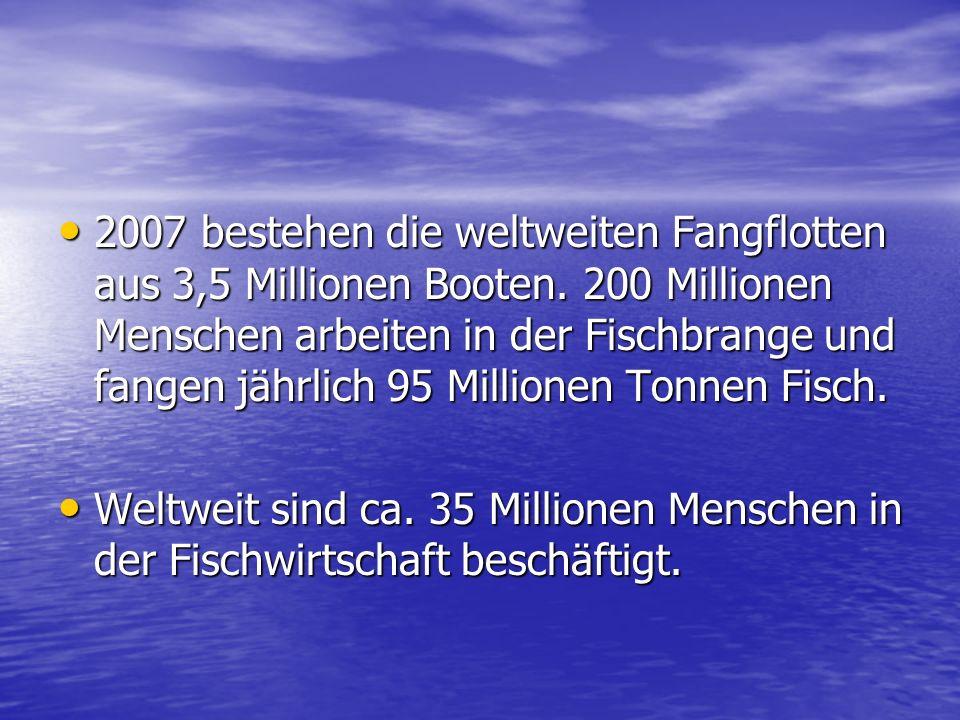 2007 bestehen die weltweiten Fangflotten aus 3,5 Millionen Booten.