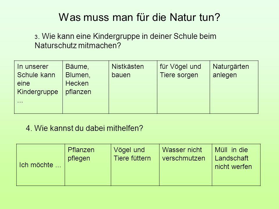 Was muss man für die Natur tun? 4. Wie kannst du dabei mithelfen? In unserer Schule kann eine Kindergruppe... Bäume, Blumen, Hecken pflanzen Nistkäste