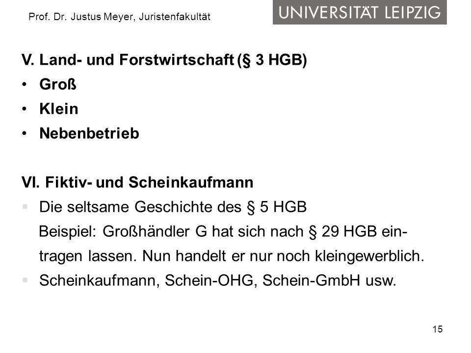 15 Prof. Dr. Justus Meyer, Juristenfakultät V. Land- und Forstwirtschaft (§ 3 HGB) Groß Klein Nebenbetrieb VI. Fiktiv- und Scheinkaufmann Die seltsame