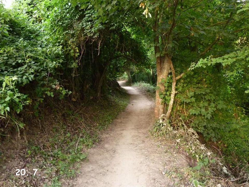 7.12 Uhr - Aufstieg zum Alto de Perdon