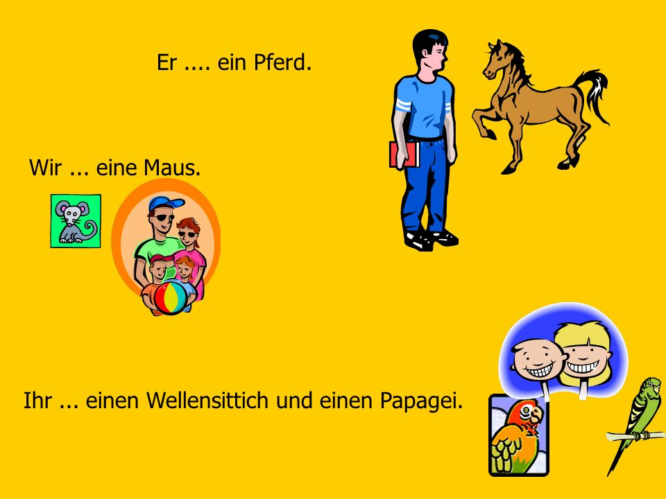 Er.... ein Pferd. Wir... eine Maus. Ihr... einen Wellensittich und einen Papagei.