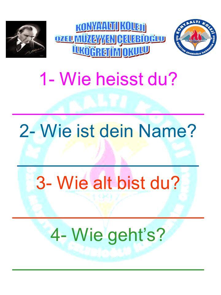 1- Wie heisst du. ___________________ 2- Wie ist dein Name.