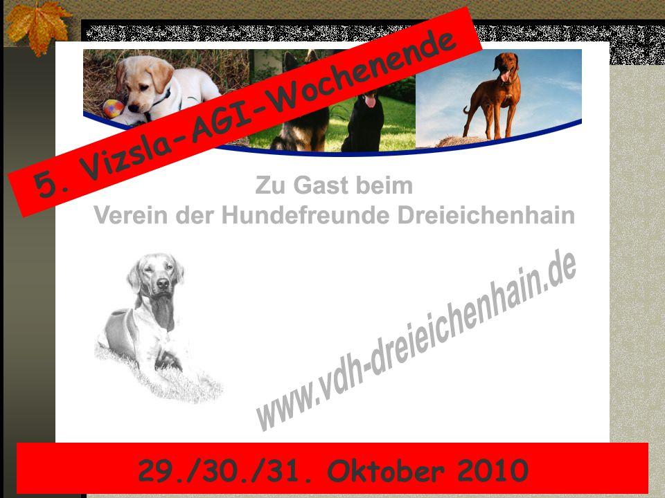 5. Vizsla-AGI-Wochenende 29./30./31. Oktober 2010
