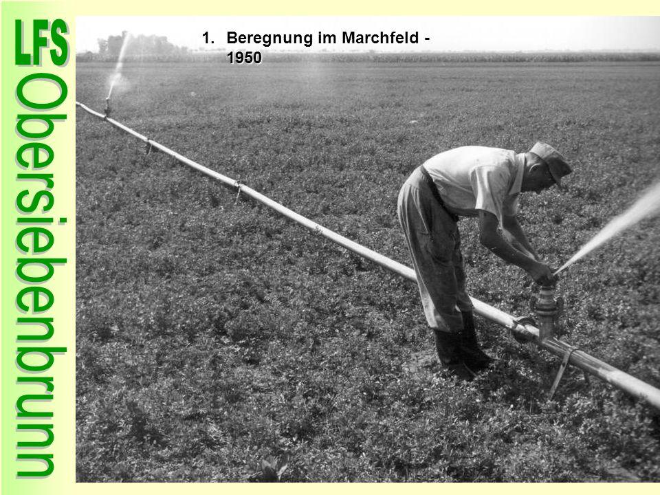 1.Beregnung im Marchfeld - 1950