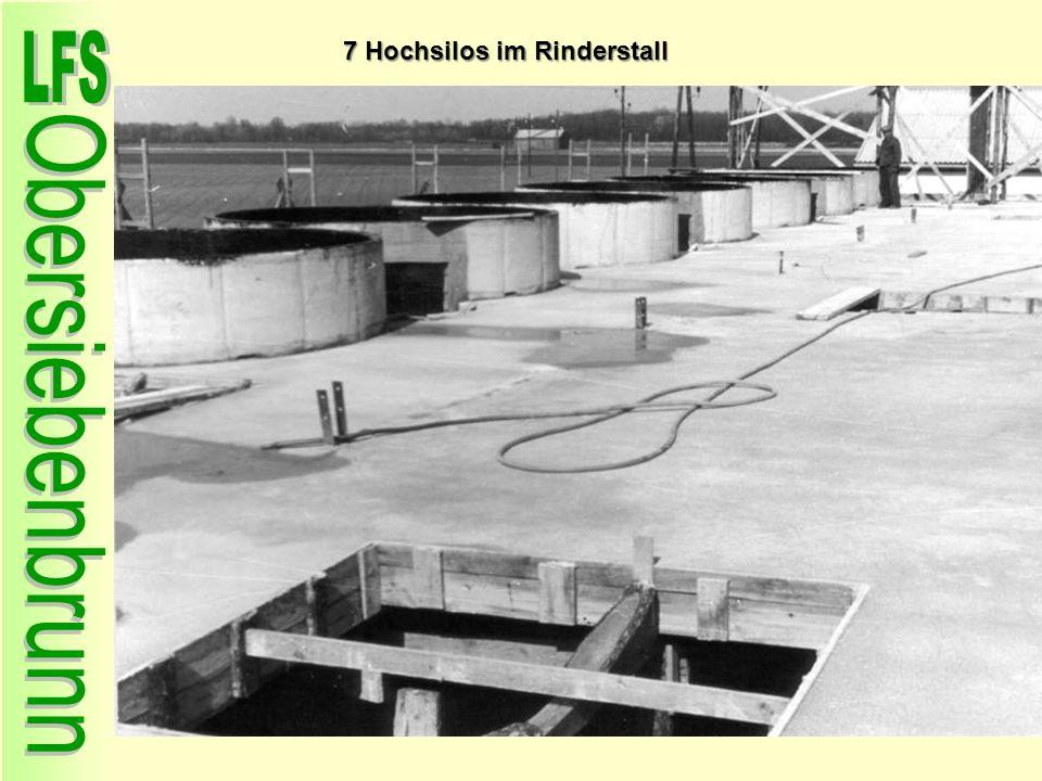 7 Hochsilos im Rinderstall