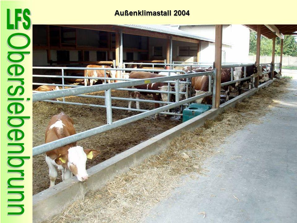 Außenklimastall 2004