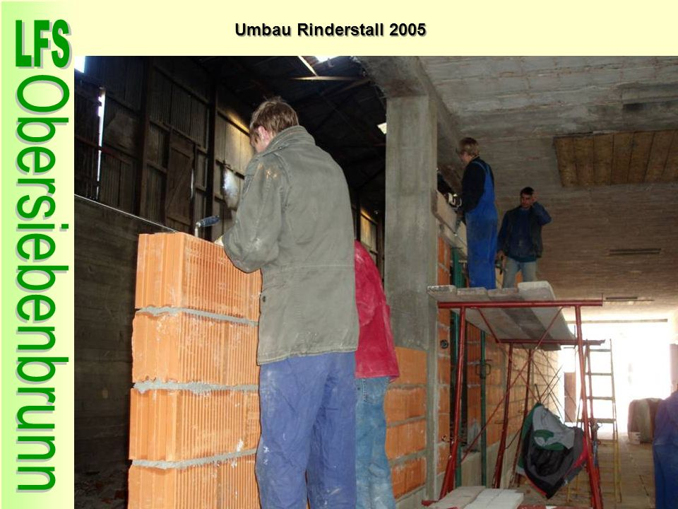 Umbau Rinderstall 2005