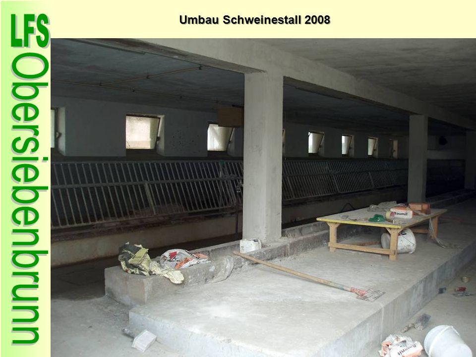 Umbau Schweinestall 2008