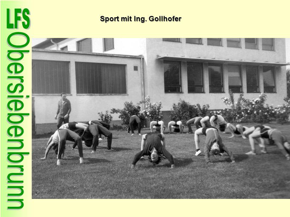Sport mit Ing. Gollhofer